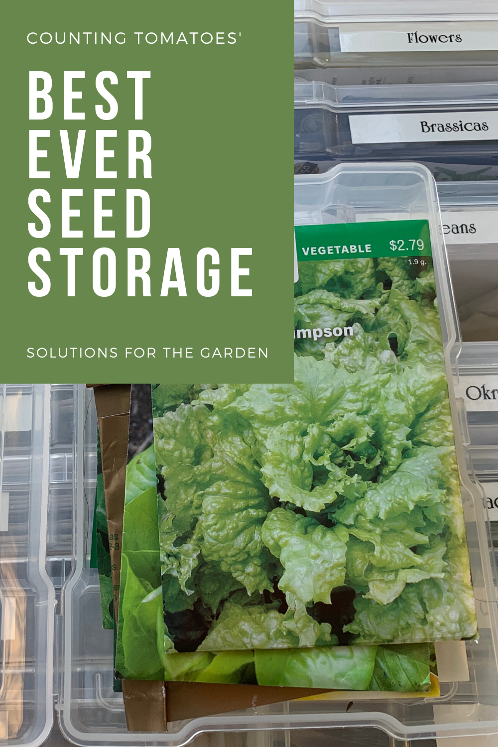 How to Store & Organize Garden Seed Packets in 2020