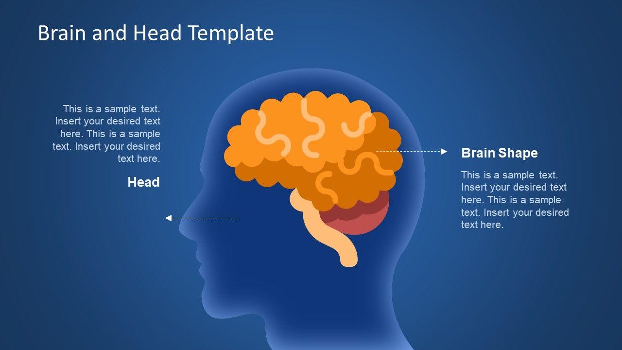 Brain Head Graphics Powerpoint Template Brain Lobes Diagram