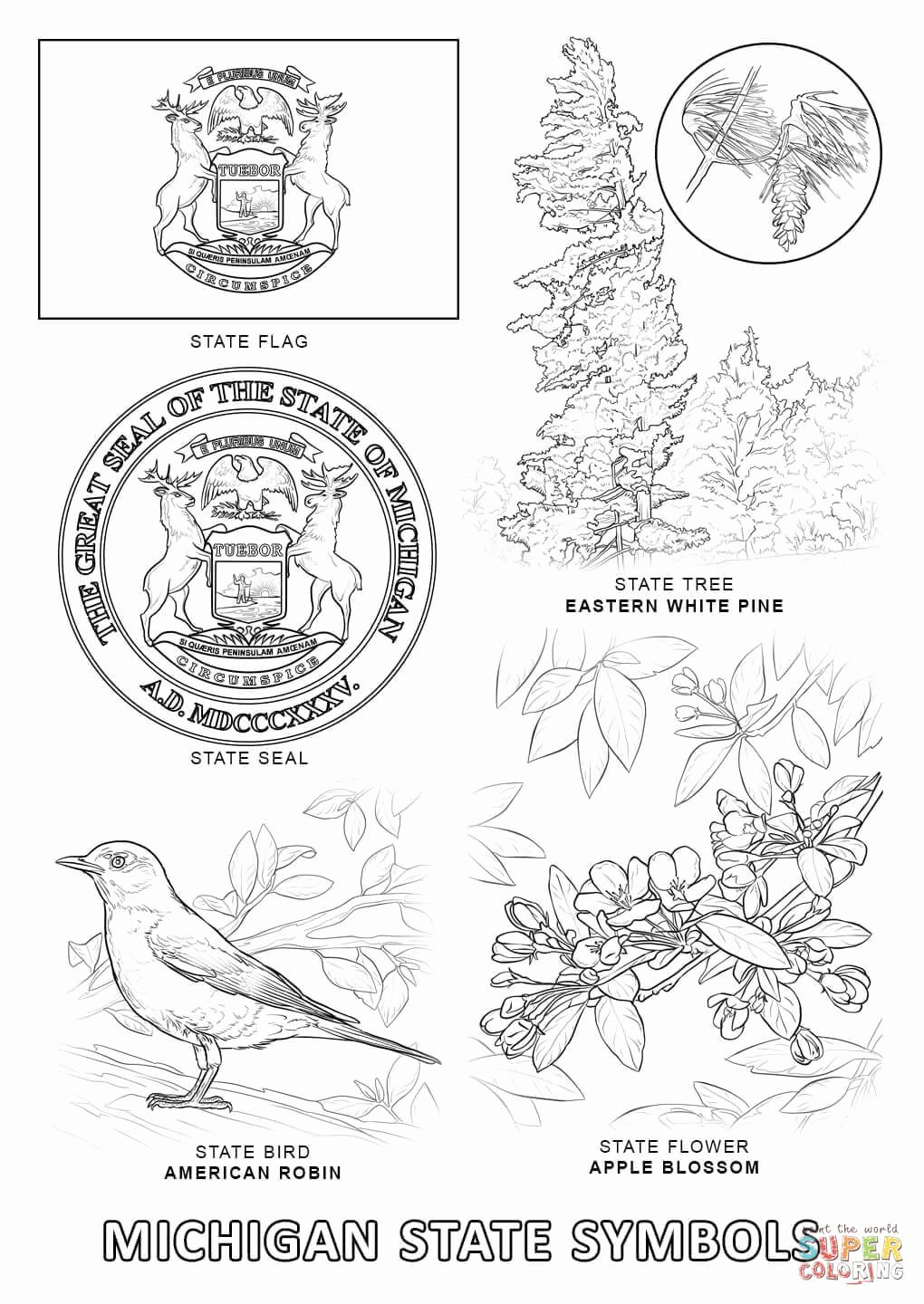Michigan Bird Coloring Pages For Kids Flag Coloring Pages State Symbols Texas Symbols