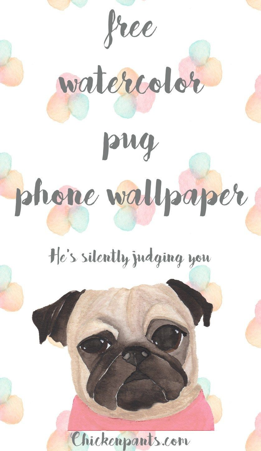 Free Pug Phone Wallpaper Pugs, Wallpaper, Phone