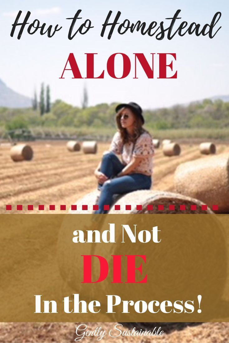 How to Homestead Alone and Not Die in the Process is part of Farm lifestyle, Homestead survival, Homesteading, Urban homesteading, Homesteading skills, Homestead farm - If you find yourself homesteading alone, it can be overwhelming! Check out  How to Homestead Alone and Not Die in the Process