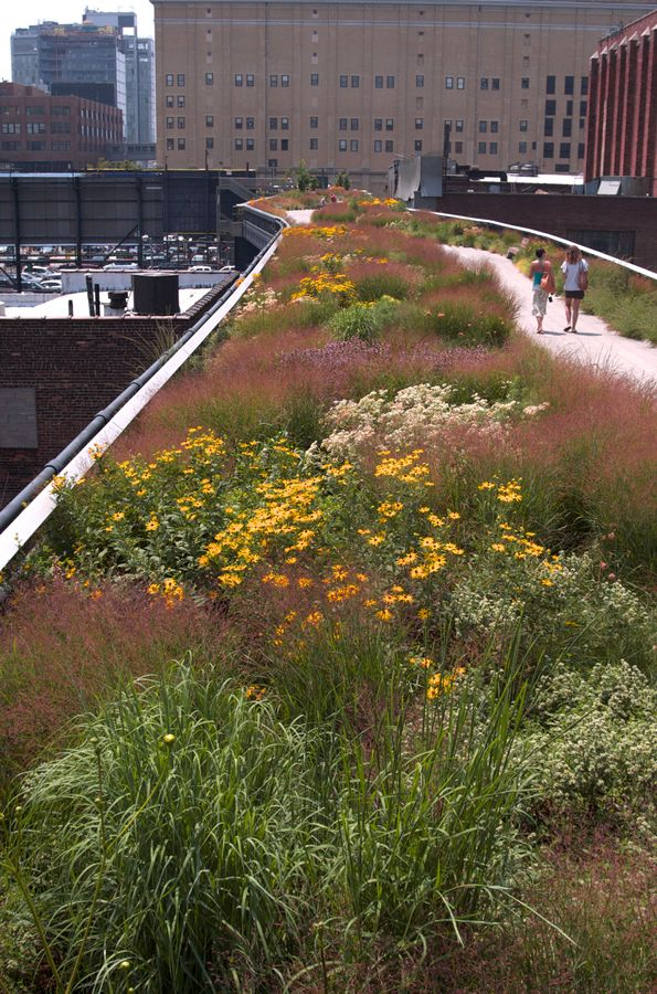 The High Line in New York. Oude spoorlijn 9 meter boven de grond die is omgetoverd tot prachtig park.   Lagendijk tuin- en landschapsarchitecten