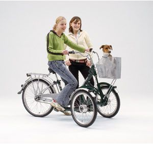Bicicletta Triciclo Kiffy Disabilinewscom Trikexmarket