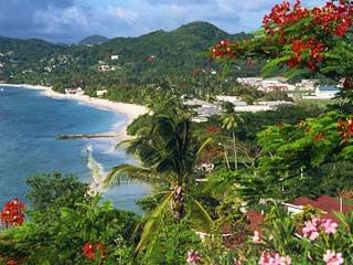 St  Georges, Grenada    hopefully my vet school destination