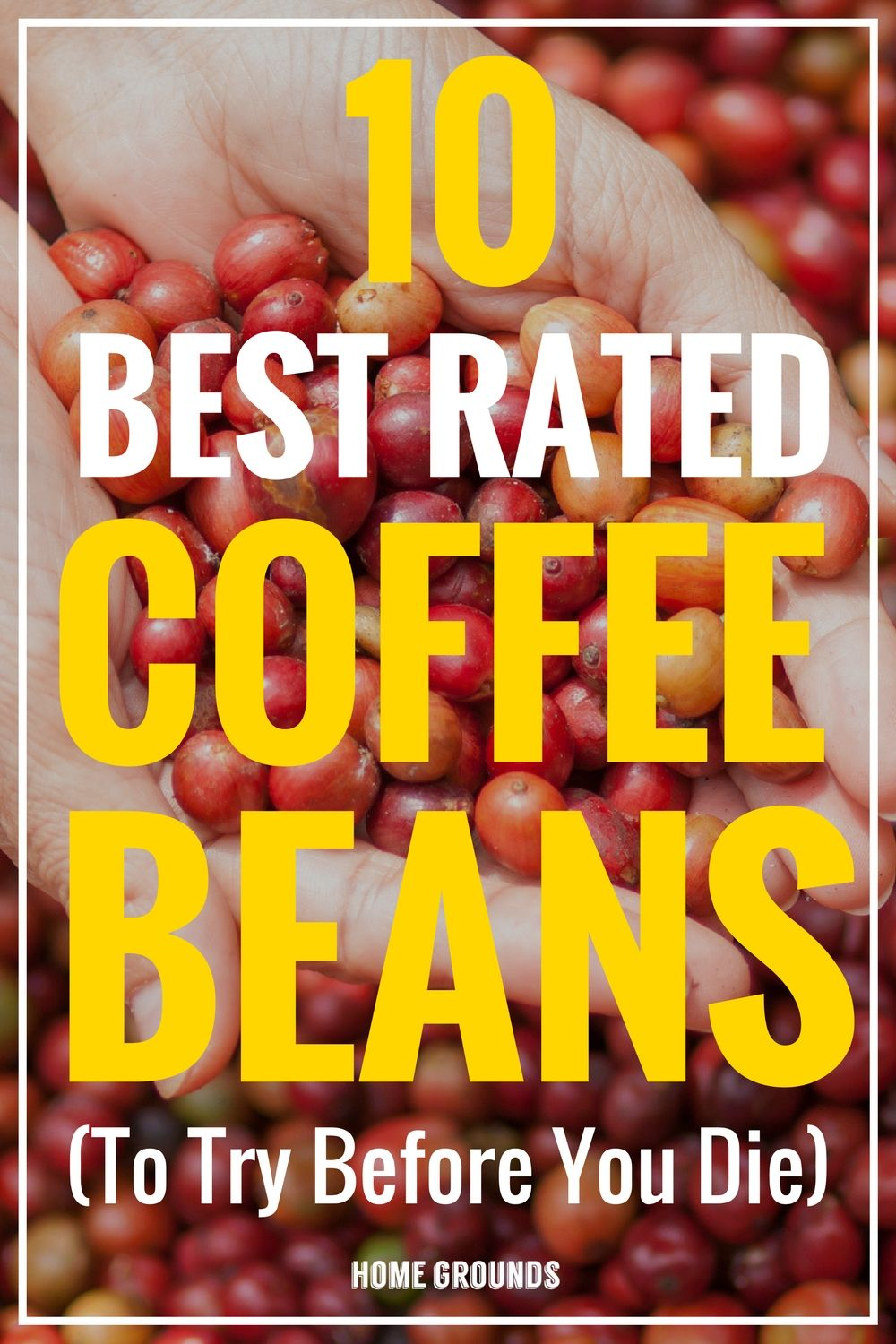 10 Best Coffee Beans in the world [2020 Bucket list