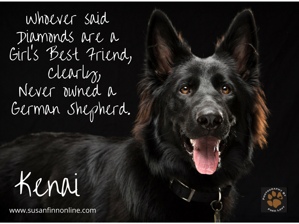 German Shepherd Dog Print Diamonds Are a Girls Best Friend Home Decor Poster