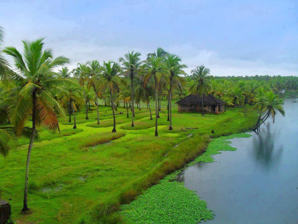 Natural Beauty Of Kerala With Images Kerala Tourism