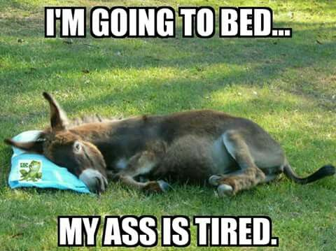 Image result for tired going to bed