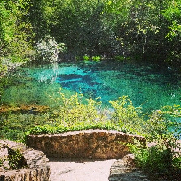 Ichetucknee Springs State Park in Fort White, FL. Beautiful place to go tubing on the crystal clear Ichetucknee river.