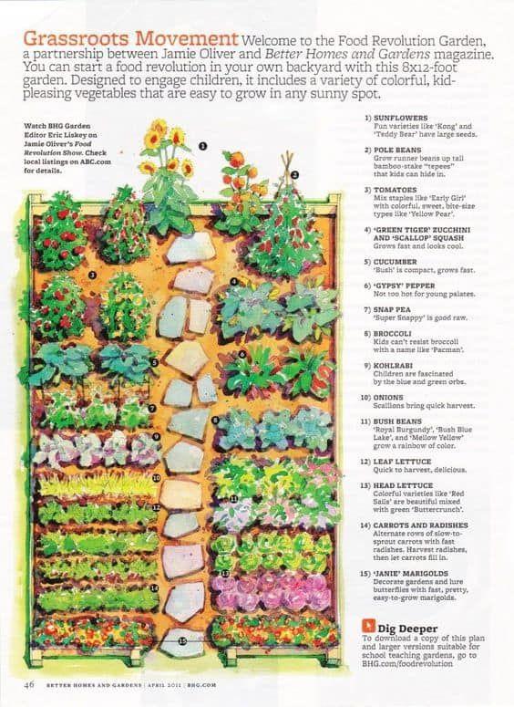 Kitchen Garden Designs, Plans + Layouts 2020 – Garden layout vegetable