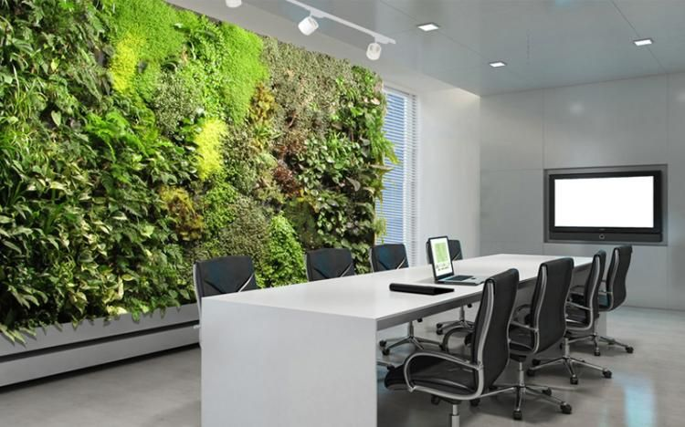 Mur végétal intérieur en 80 idées pour la maison écologique moderne ...