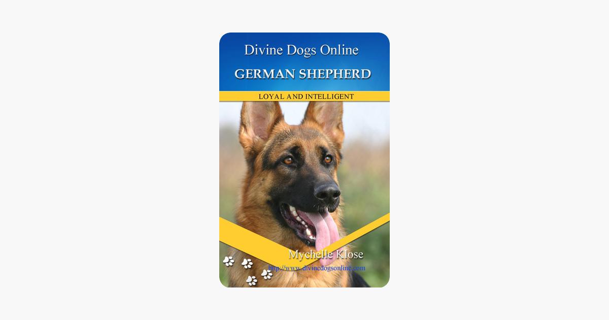 Pets German Shepherd Mychelle Klose German Shepherd Mychelle Klose Dogs Online Fancy Dog Pets
