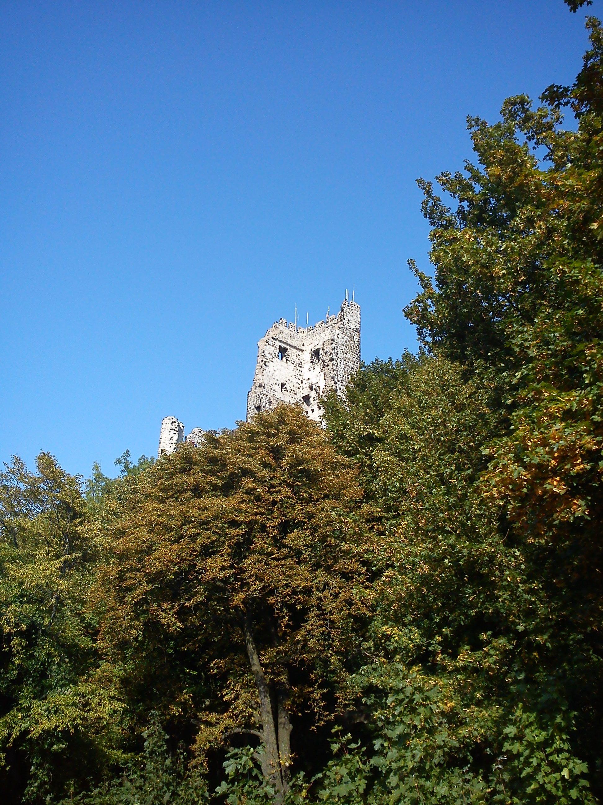 waren das noch zeiten, in den mittleren sechziger jahren, immer wieder dort oben märchen erlebt....Drachenfels im Siebengebirge am Rhein (www.drachenfels.net)
