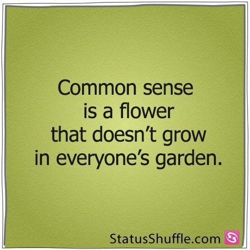 Some People Lack Common Sense Funny Quotes Quotable Quotes Words