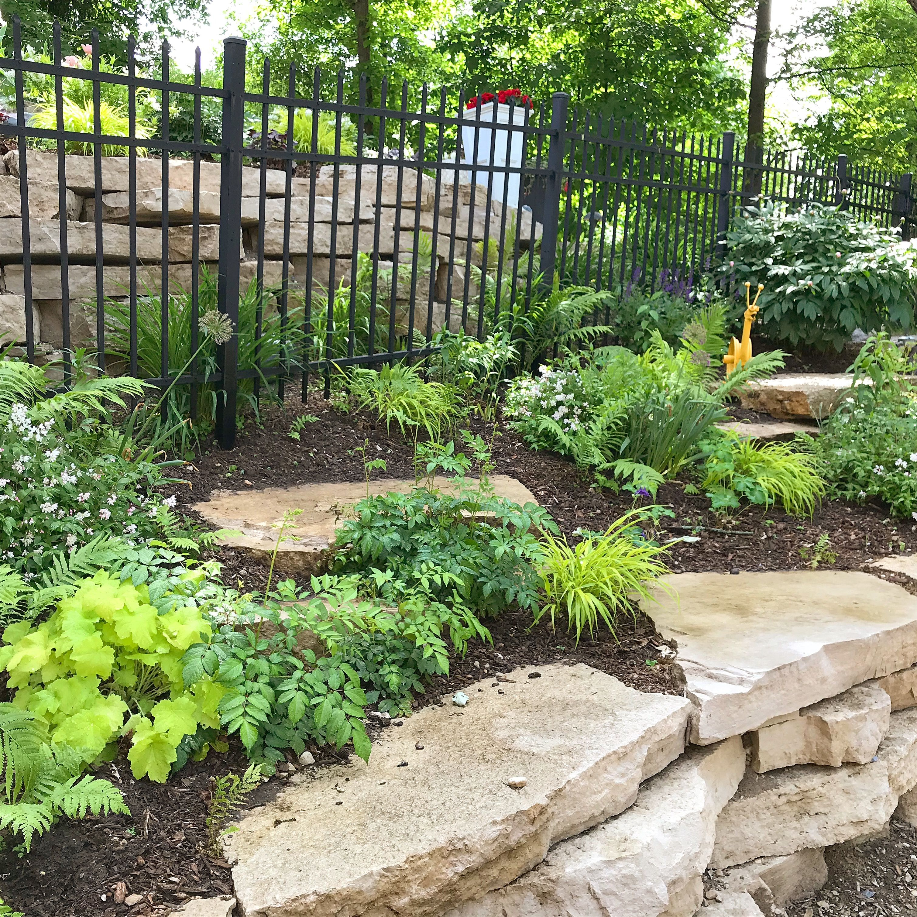 I Selected Easy Care Perennials And Shrubs