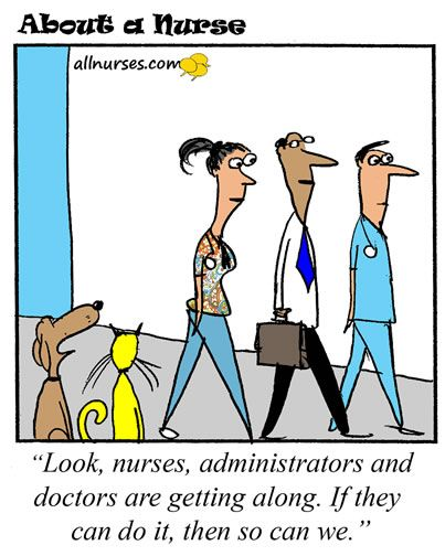 Look Nurses Administrators And Doctor S Getting Along Nurse Cartoon Medical Jokes Future Nurse