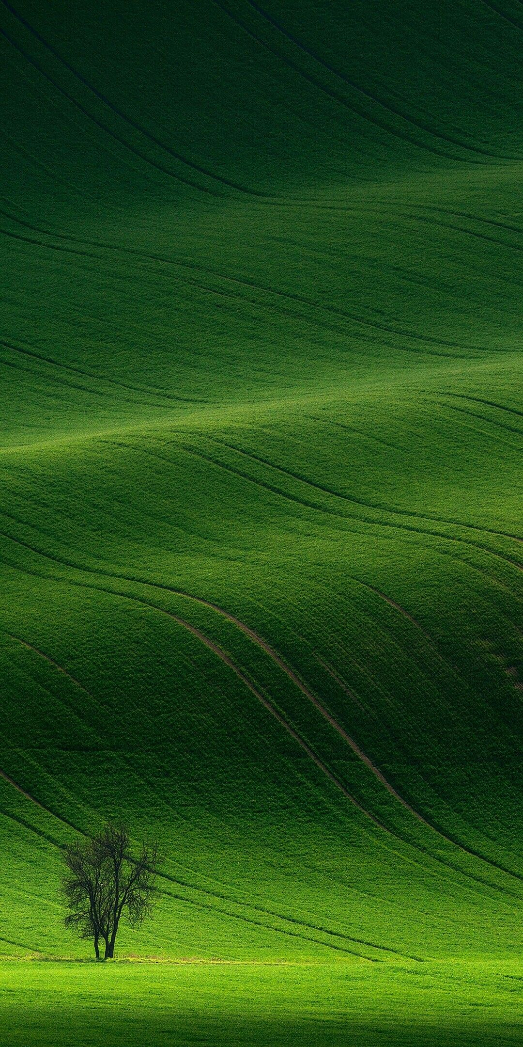 Green Hill Wallpaper With Images Nature Photography Nature Pictures Beautiful Landscapes