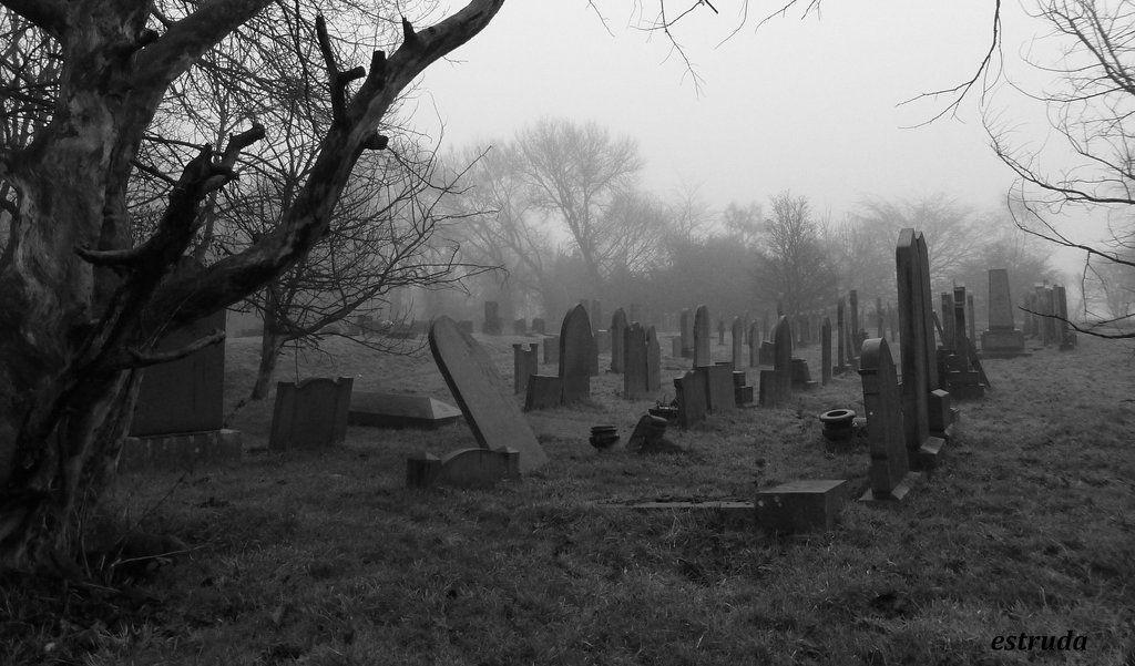 Cemetery Memories By Estrudadeviantart