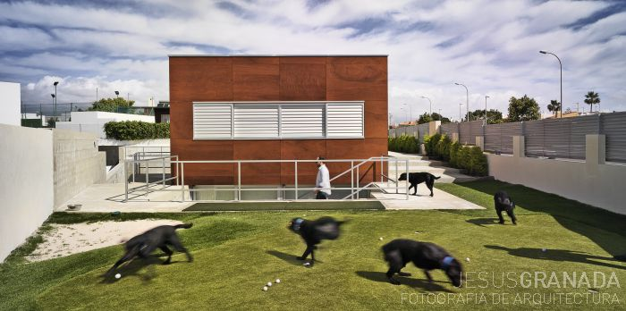 #Architecture and animals. #Arquitectura y animales. Fotos de @jesusgranada's photos.