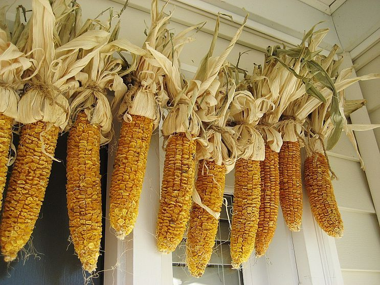 corn garland for porch