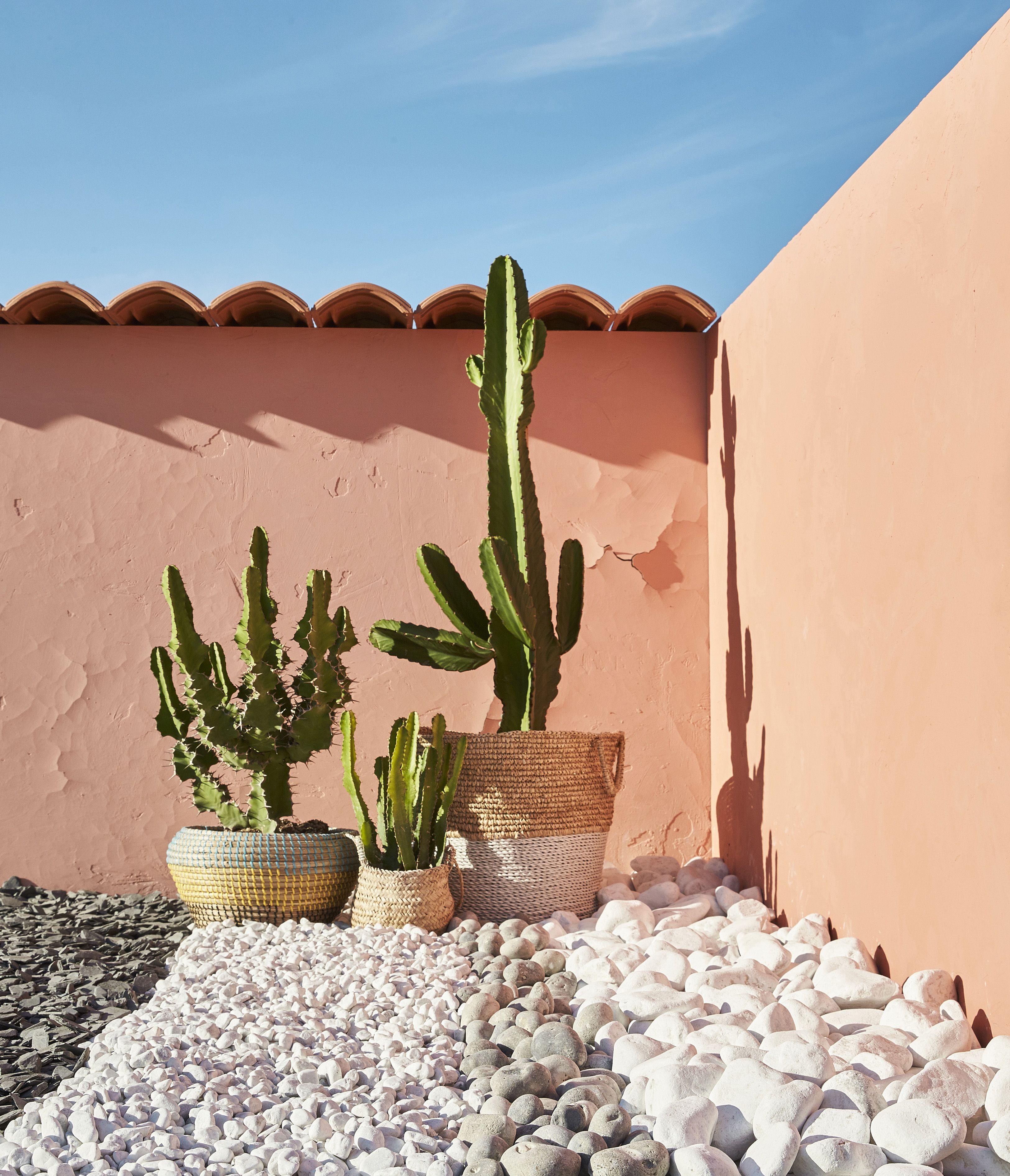 De La Terrasse Au Jardin Graviers Et Galets Apportent Du Style A Vos Exterieurs Tout En Delimitant Les Espaces Ler Jardins Decoration Jardin Terrasse Jardin