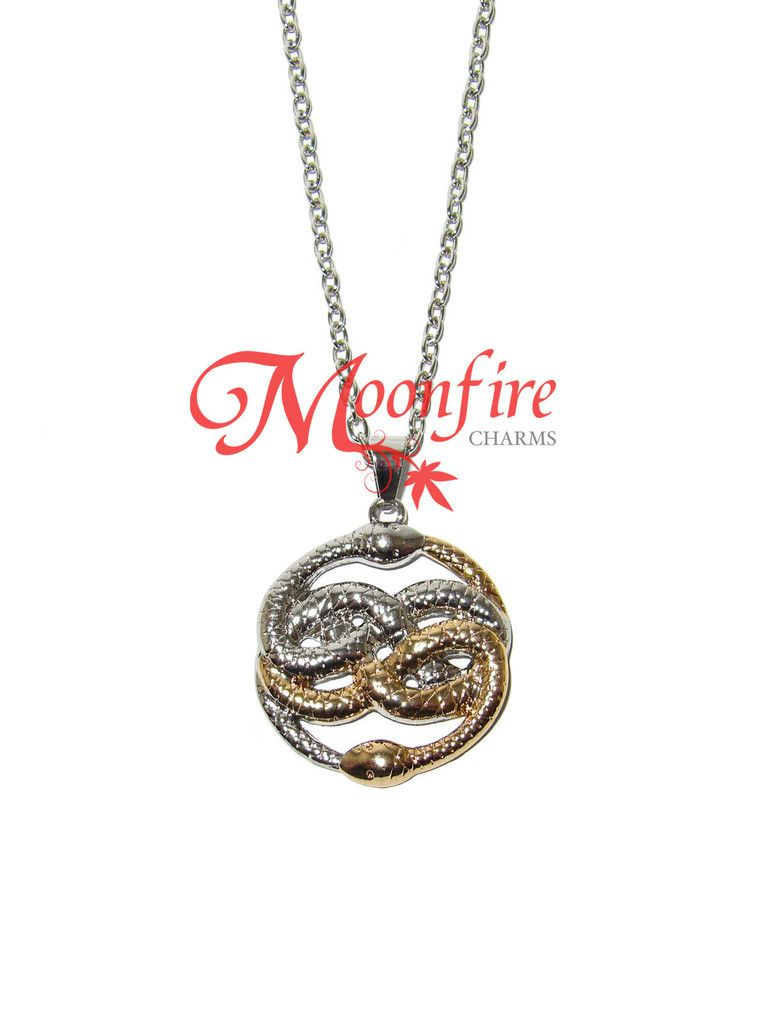 The neverending story auryn ouroboros talisman necklace wishlist the neverending story auryn ouroboros talisman necklace mozeypictures Choice Image