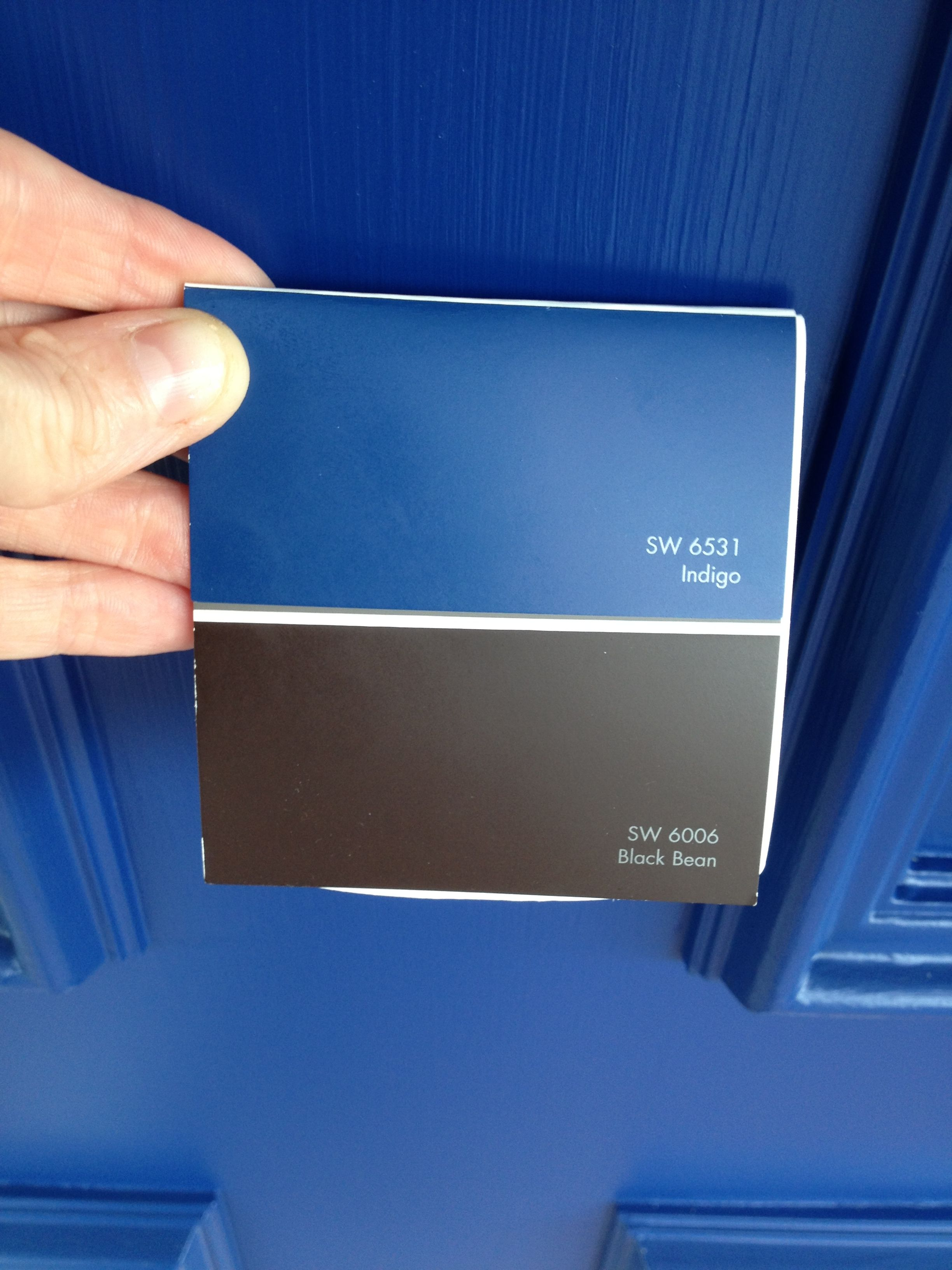 paint colors from sherwin williams indigo on doors and black bean