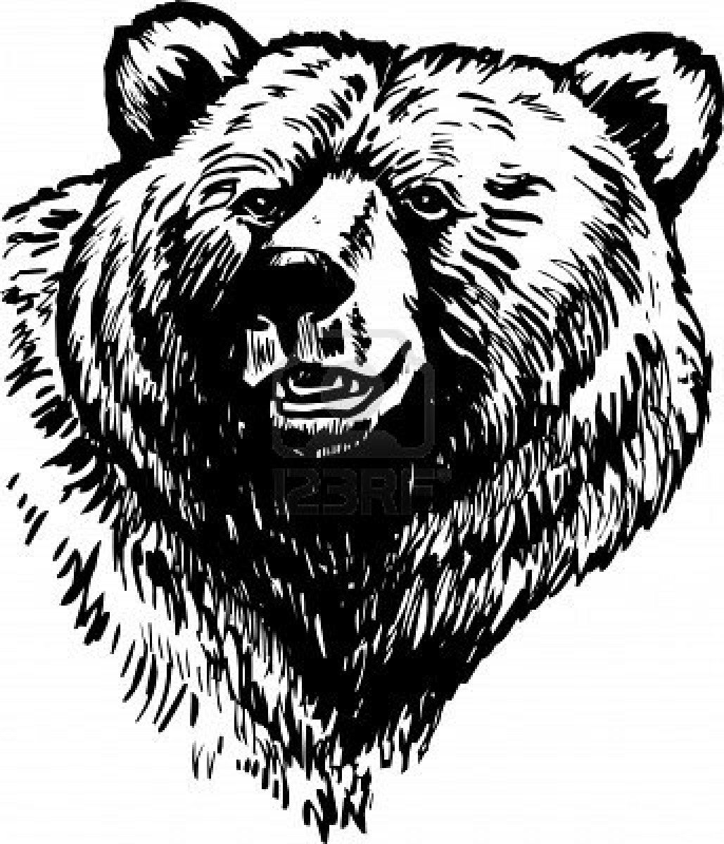 Novel Guides Bear drawing, Bear tattoo designs, Grizzly