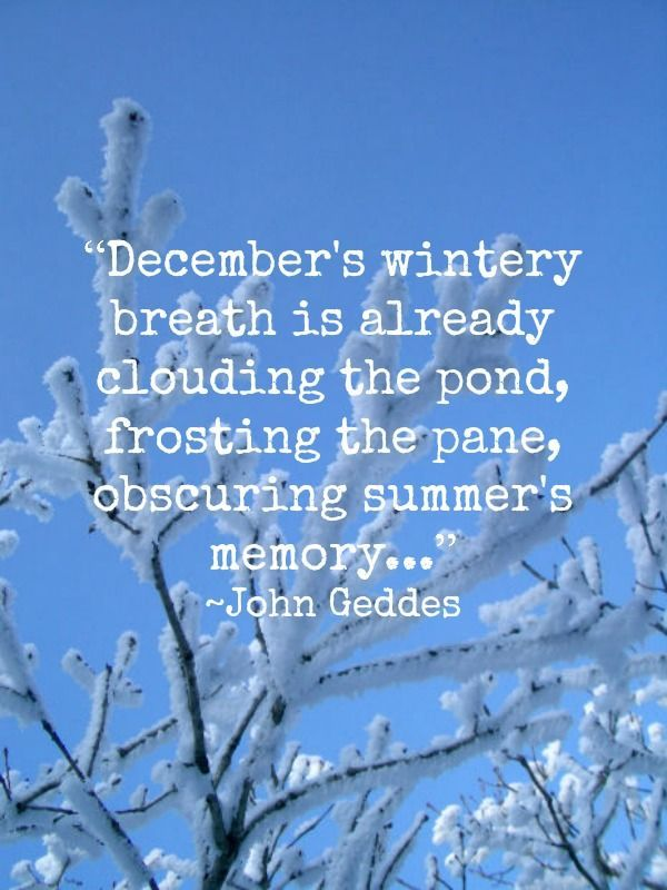 Genial Welcome December Quotes. QuotesGram By @quotesgram