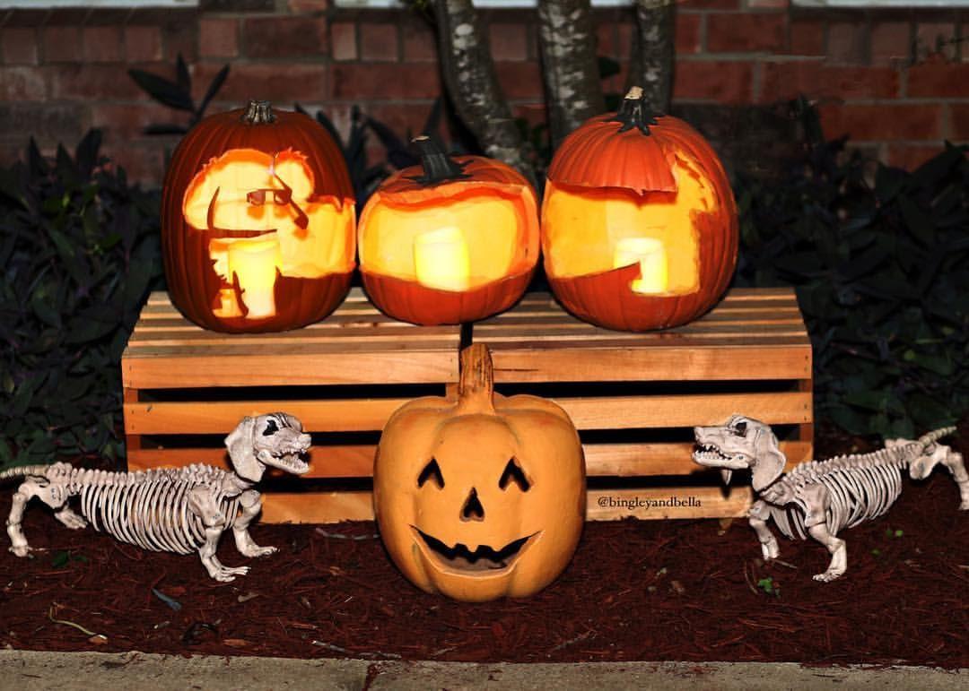 Dachshund Halloween Decorations.Halloween Dachshund Pumpkin Dachshund Wiener Dog Puppies Weiner Dog