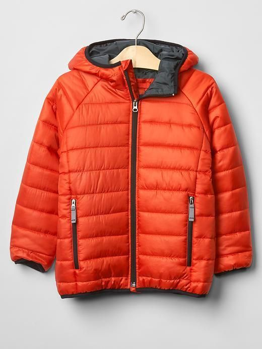 eeba31577 Boy Puffer Winter Jacket Hood Water-repellent Orange GAP PrimaLoft ...