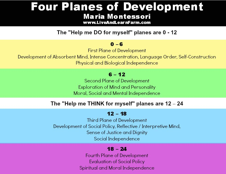 montessori three embryonic stages The third plane: ages 12–18 (adolescence) the fourth  at this stage, the child has, as montessori put it, an absorbent mind from birth until.