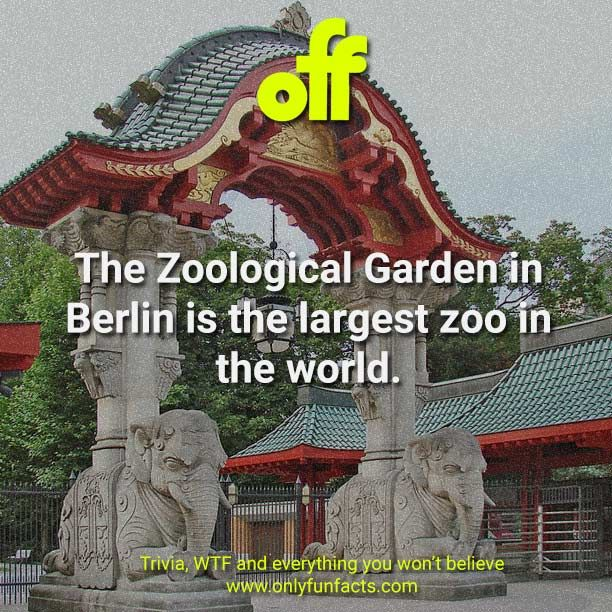 68 Fun Facts About Europe You Need To Know In 2020 Fun Facts Wow Facts Funny Facts