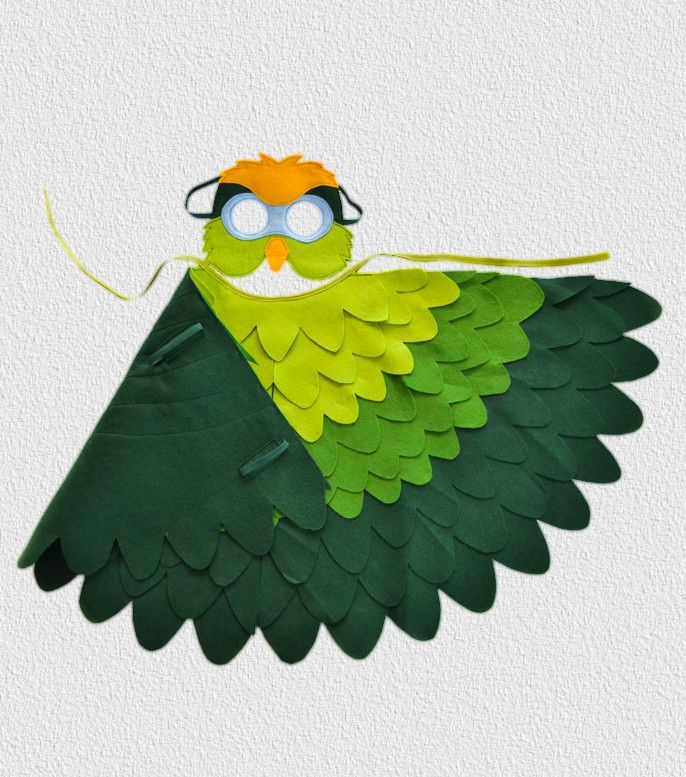 Green Parrot Costume Wings /& Hat Pirate Bird.