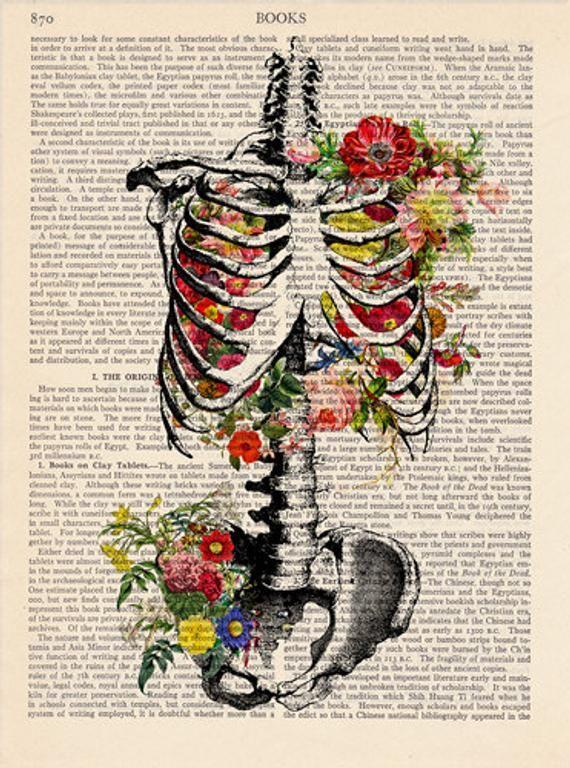 Anatomie impression, médical poster Vintage Illustration / squelette / décoration murale Art décoratif livre Page de livre Vintage affiche rétro impression 029