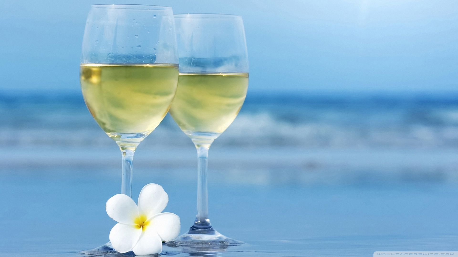 Here Two Glasses Of White Wine And Also Withe Wine