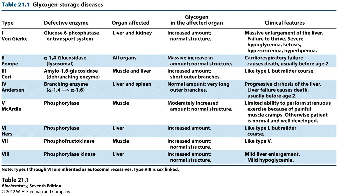 Biochemistry Class Notes Glycogen Storage Disease Biochemistry Disease Genetic Counseling
