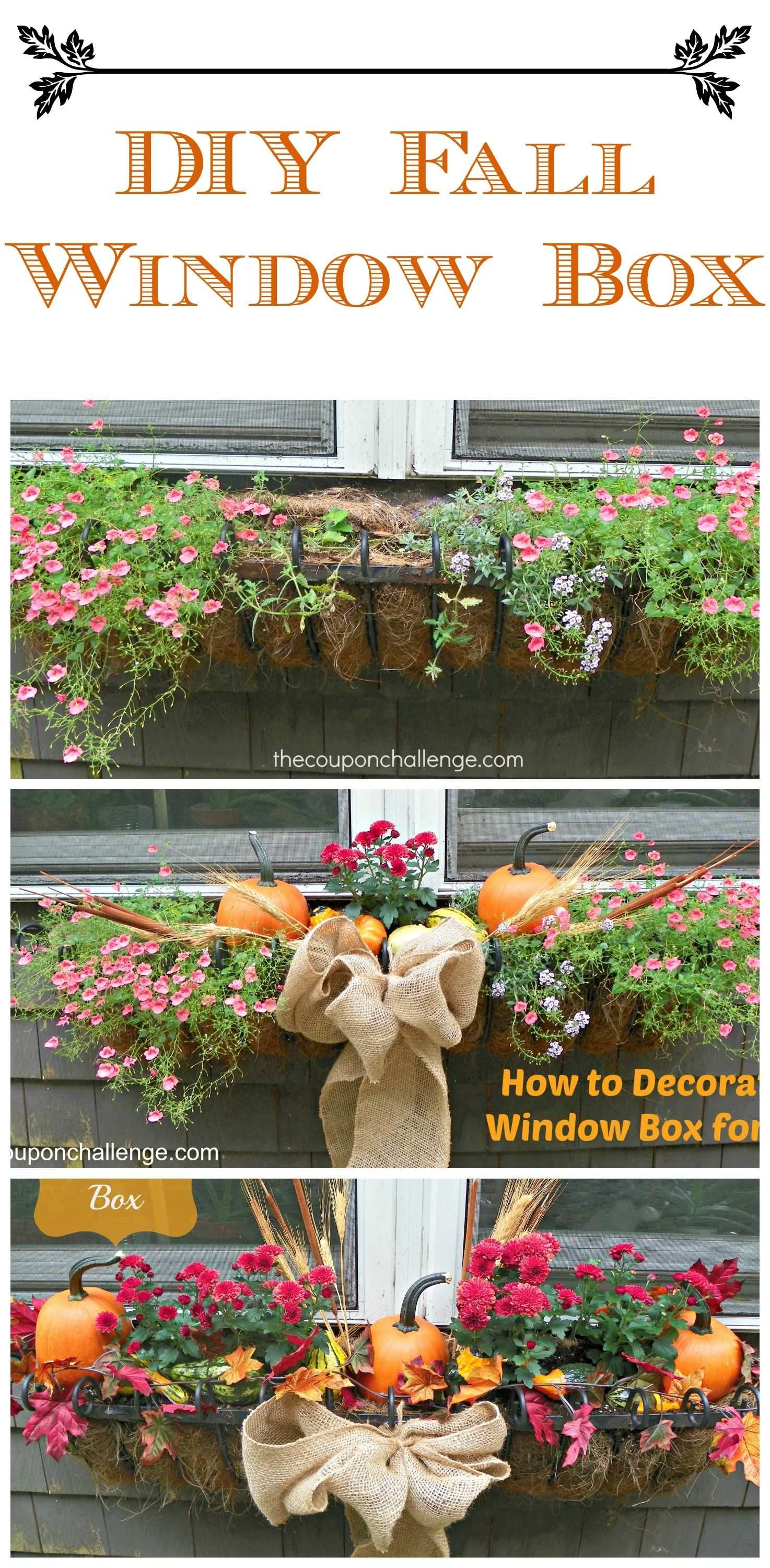 Diy Fall Window Box Flowers Autumn Garden Gardening Windows Home Ideas Gardens