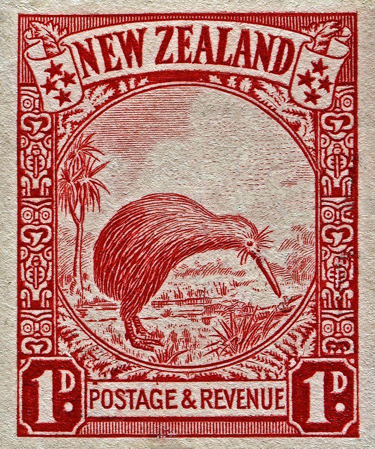 1936 New Zealand Kiwi Stamp Postage Stamp Art Vintage Stamps Rare Stamps