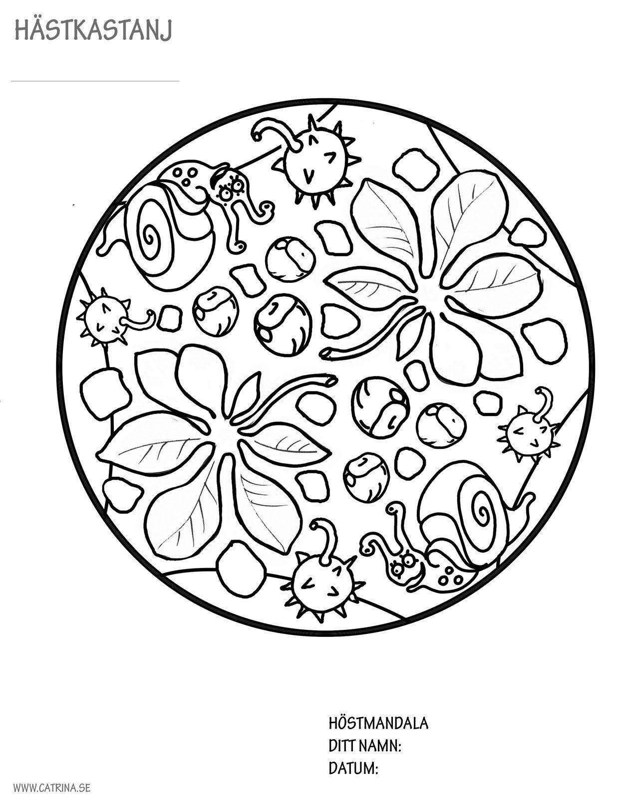 Autumn mandala s k p google work pinterest mandala for Autumn mandala coloring pages