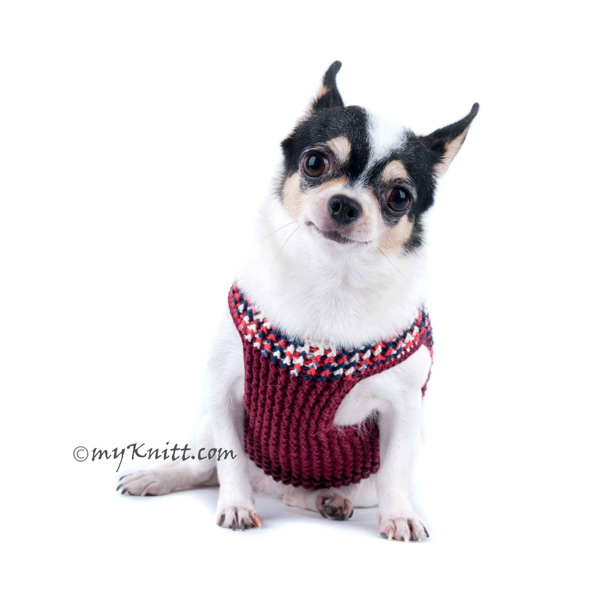 Sembadesign Shared A New Photo On Dog Harness Cute Chihuahua