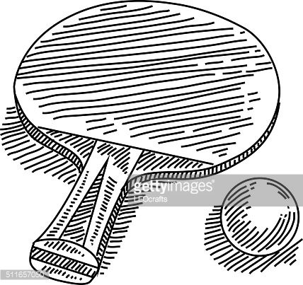 Line Drawing Of Table Tennis Elements Are Grouped Contains Eps10 And Table Tennis Tennis Art Tennis Drawing