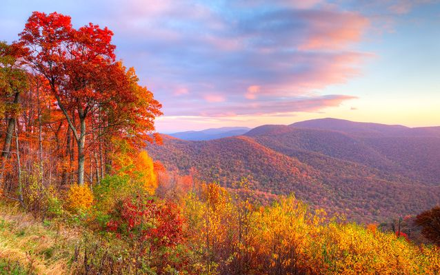 The Best Fall Destinations (Besides New England)