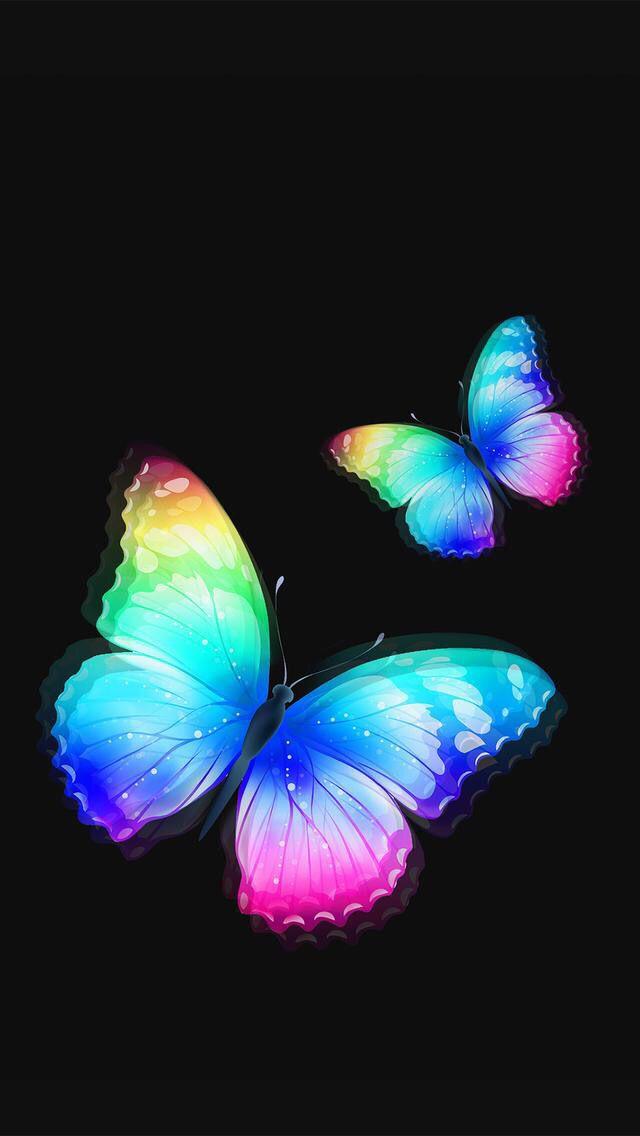 Butterflies Wallpaper Butterfly wallpaper, Rainbow