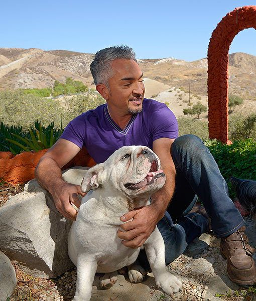 Let Certified Professional Dog Trainer Candy Clemente Help You