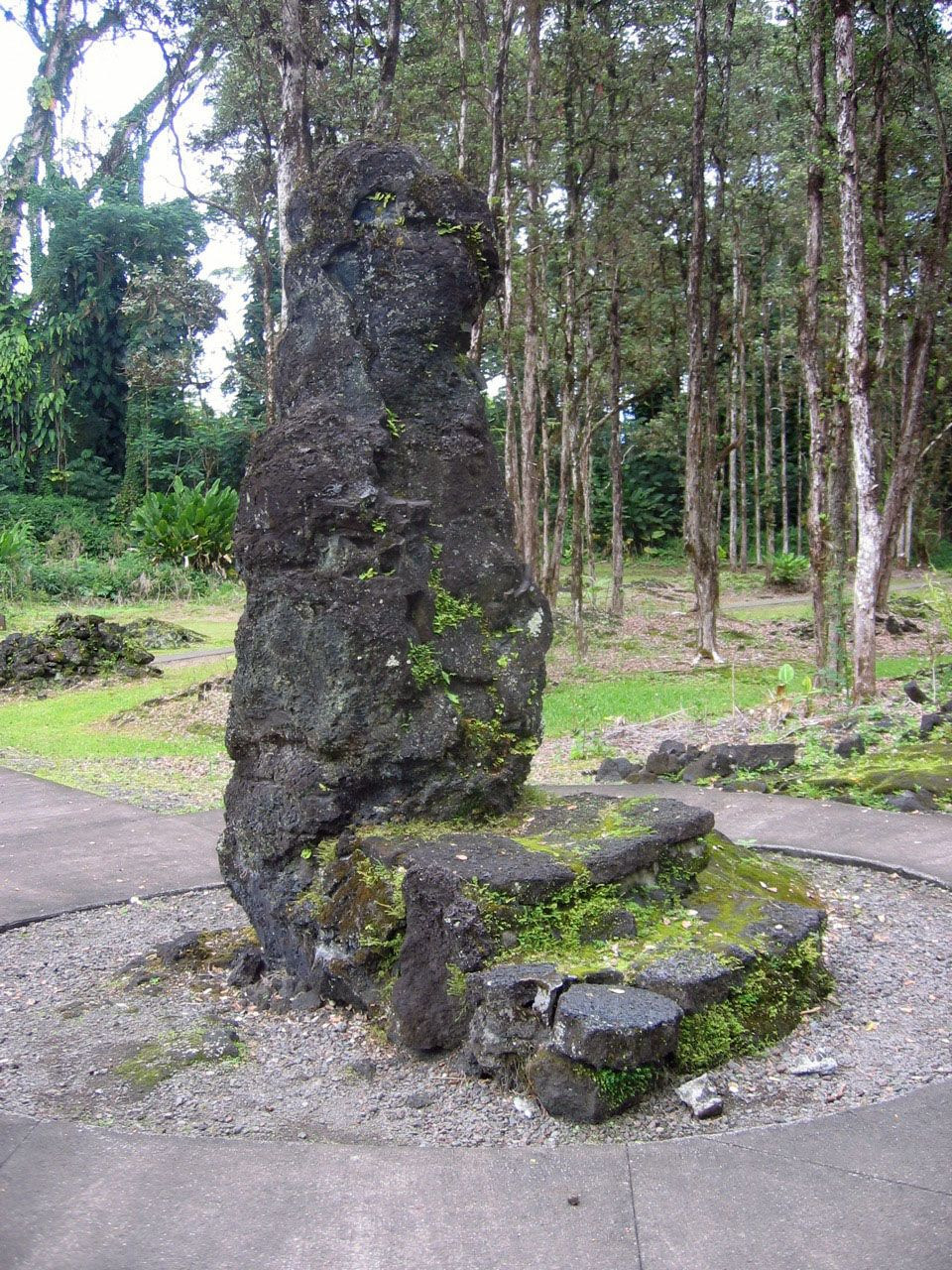 picture of Lava Tree State Monument