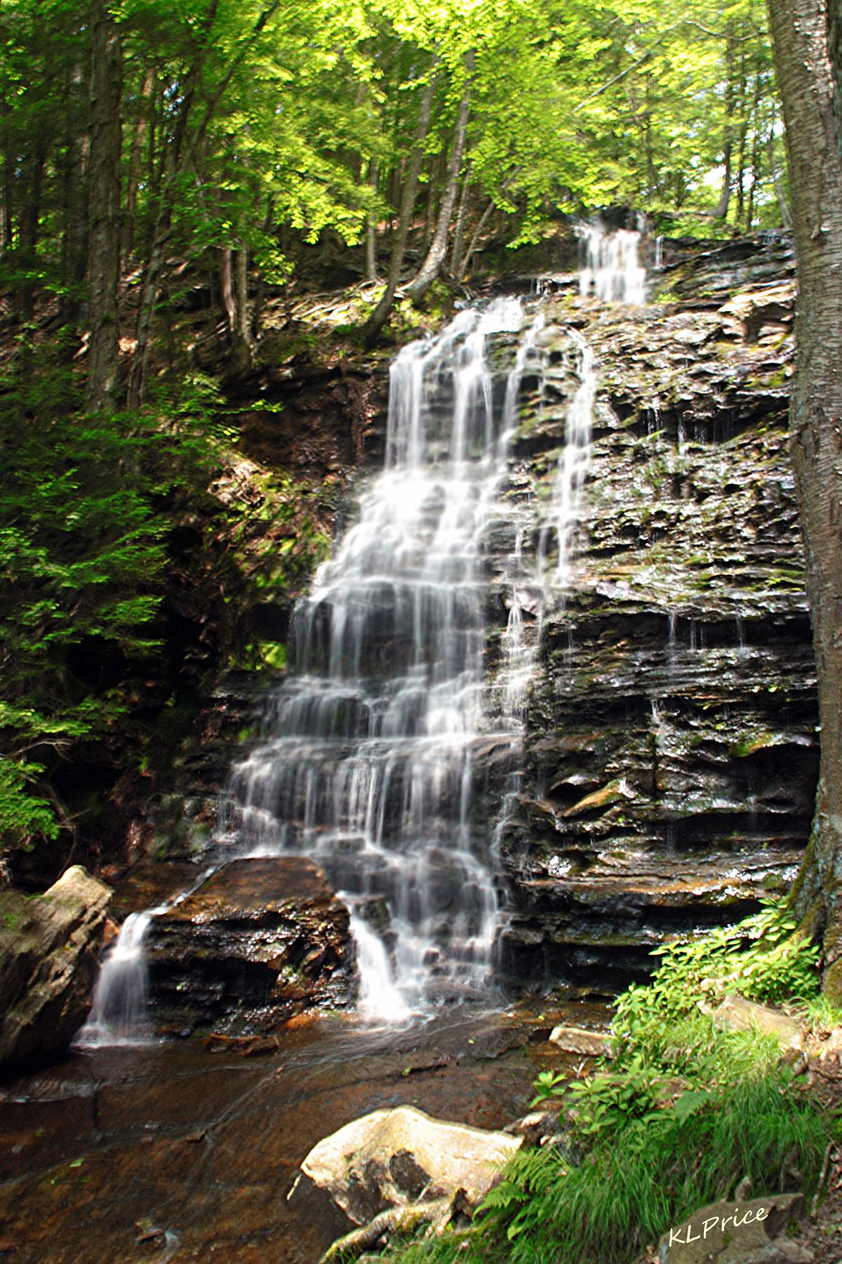 Bear Creek Falls off of White Haven