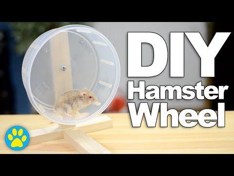 Diy Hamster Wheel Diyjuly Hamster Diy Hamster Diy Cage Hamster Toys