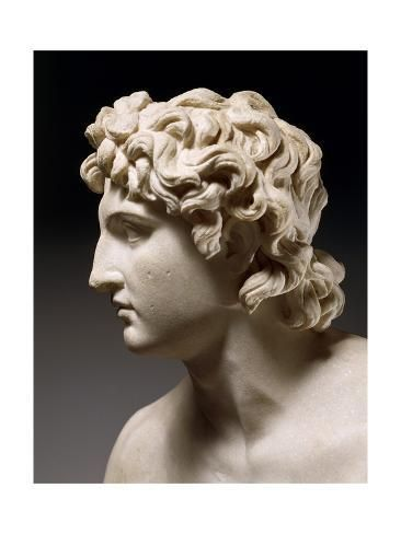 Head of Alexander the Great Giclee Print by | Art.com