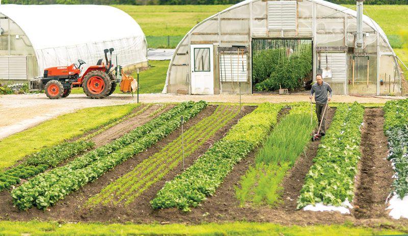 Grow More With Less Through Farm Efficiency Hobby Farms
